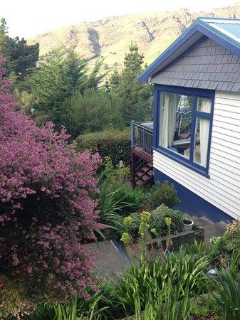 Shunyata Health Retreat / Day Spa: Beautiful garden!