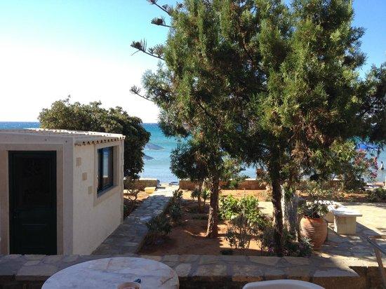 Villa Plori : Villa's garden