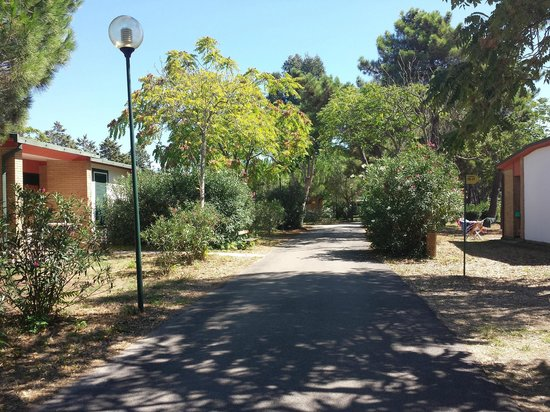 La Serra Holiday Village & Beach Resort: Vialetti