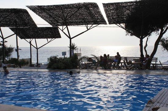 Agios Nikitas, Grekland: Copia