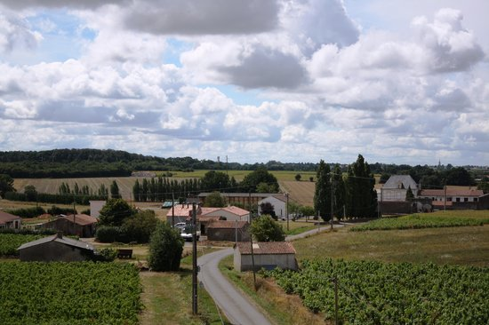 Moulin du Patis-Coraud : The view