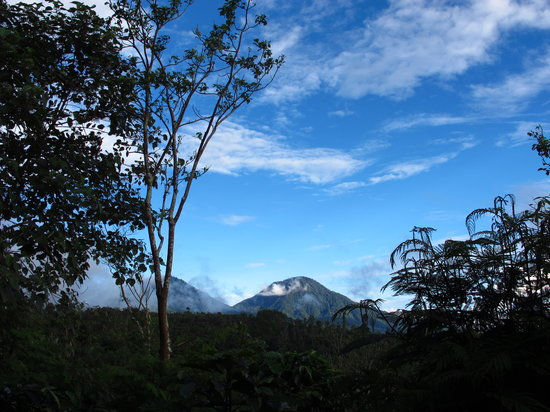 Munduk Moding Plantation: View on a clear blue day