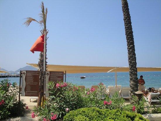 Sundance Resort: Playa