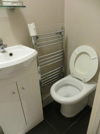 Pembury Hotel: Toilet niet te gebruiken door krapte