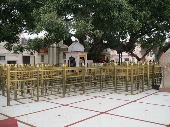 Bilaspur, India: The temple precincts – the queue maze