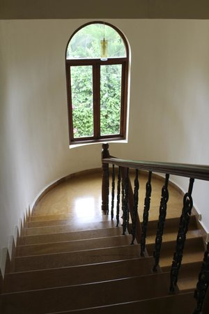 Bougainvillea Guest House Goa: Stairs.. view from penthouse