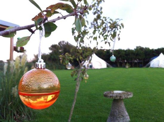 Lowarth Glamping: The Garden