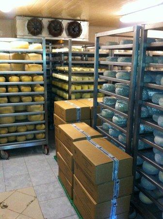 Arianna & Friends Day Tours: Cheese Cellar
