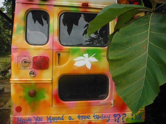 Cinco Ceibas Rainforest Reserve and Adventure Park : Colorful, comfortable and creative bus that gets around the reserve