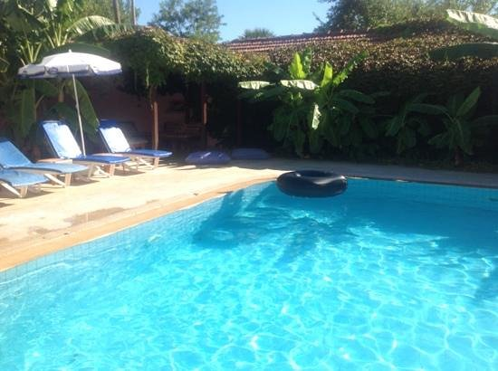Tufan Apart: pool with excellent shaded area where are daughter would take her afternoon naps.