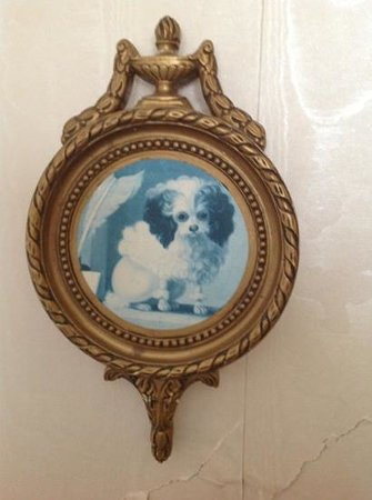 Alice's Cottages and Spa Hideaways: loved the dog with the immaculate hair-do - a hidden detail in Aphrodite's bedroom...