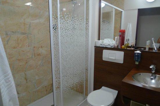 Brit Hotel Toulouse Colomiers – L'Esplanade : Salle de bains