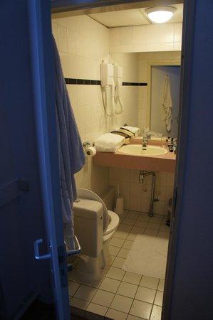 Falcon Plaza Hotel : Salle de bain moderne, interrupteur à gauche de la porte (bravo), toilettes dans l'entrée (bravo