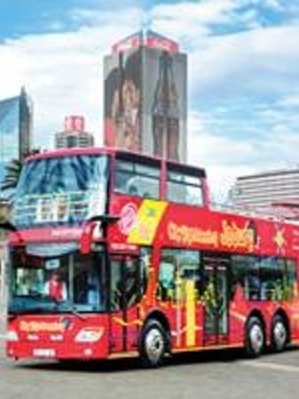 City Sightseeing Joburg Attraction