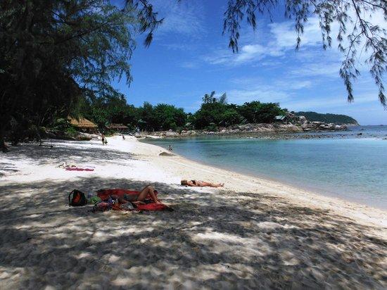 Ocean View Beach Resort: The beach
