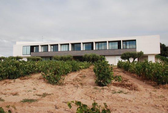 Finca de los Arandinos: Hotel entre viñedos