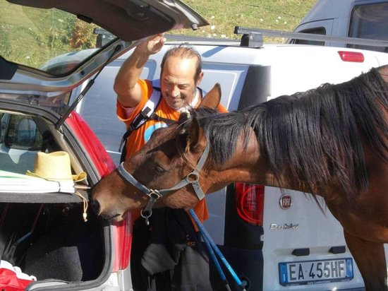 Sibilla: Cavalli al Rifugio