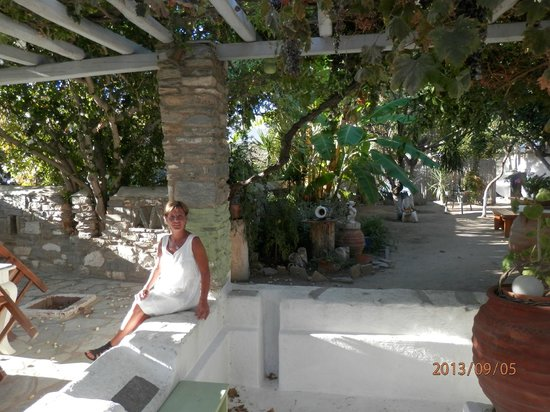 Hotel Aegean Village: la vue des studios