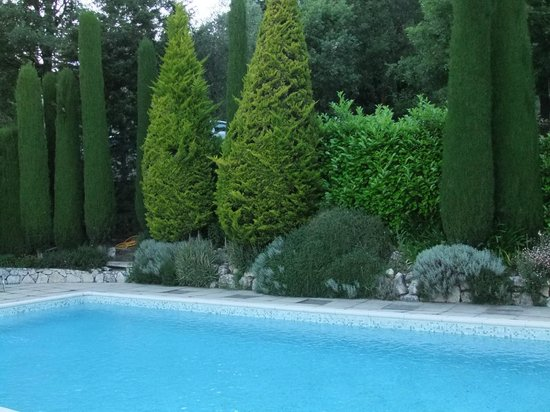La Rocheliere: Pool area