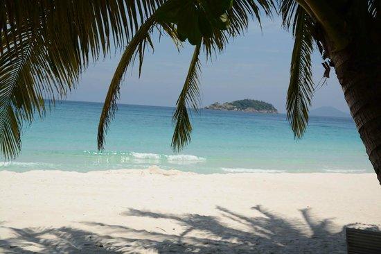 Wisana Village, Redang Island: beach