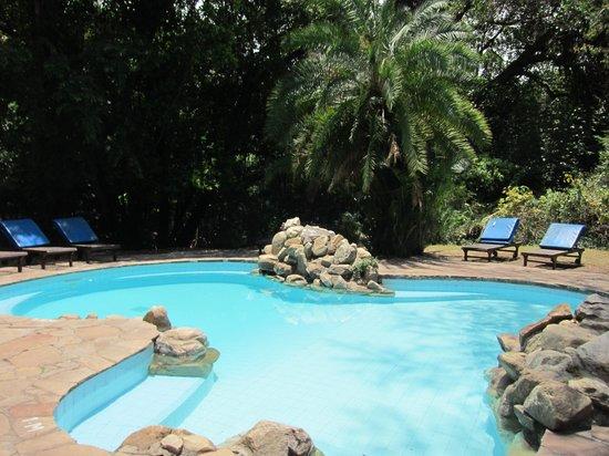Siana Springs : プール