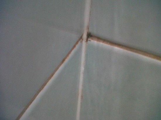 Ramada Glasgow Airport: Filthy tiling throughout the bathroom
