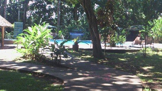 Laguna Lodge Tortuguero: piscina