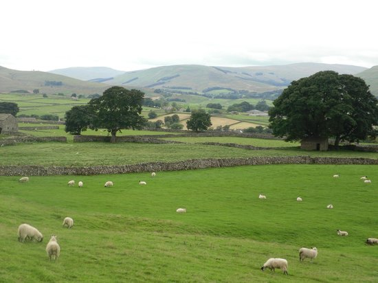 Browside & Underwood Self Catering Cottages: View from the room