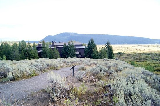 Jackson Lake Lodge: View of the hotel from one of the trails