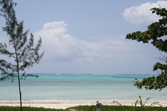 Domokuchu Beach Bungalows : the view