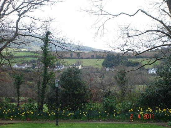 Creacon Wellness Retreat: Creacon Lodge Views
