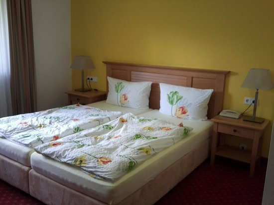 Hotel Terra-Nova : vue de la chambre