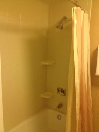 Courtyard Detroit Southfield: Shower