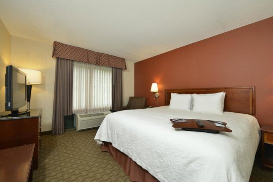 Hampton Inn East Aurora: King Guest Room