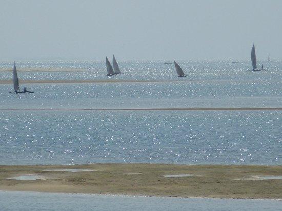 Bomani Beach Bungalows : Return of the fishing fleet