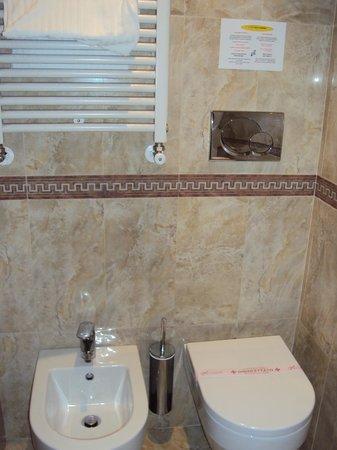 Borromeo Hotel: Banheiro com aquecedor