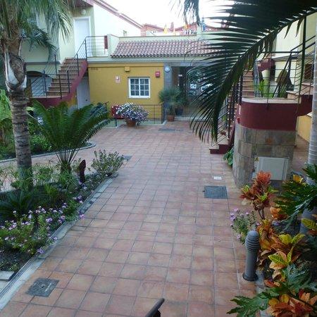Residencial El Llano: Camino a la recepción desde la piscina