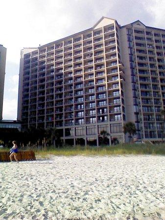Beach Cove Resort: From the beach