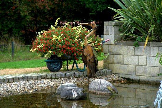 Durham University Botanic Garden: Pond View