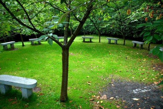 Durham University Botanic Garden: Friendship Garden