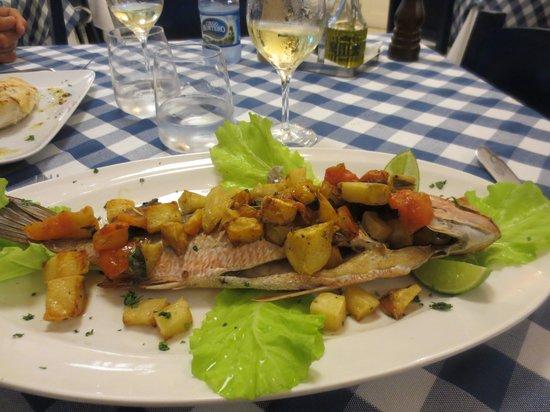 Mediterraneo Havana: Pescado al horno