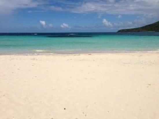 Playa Flamenco: View