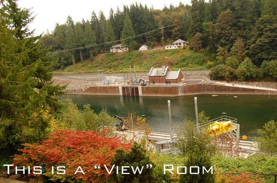 """Salish Lodge & Spa: This is the """"view"""", it's a powerplant."""