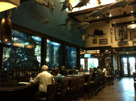 Huge fish tank picture of islamorada fish company for Fish co