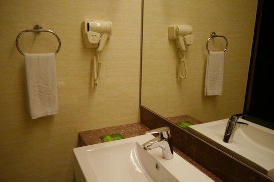 Ixora Hotel Penang: hair dryer