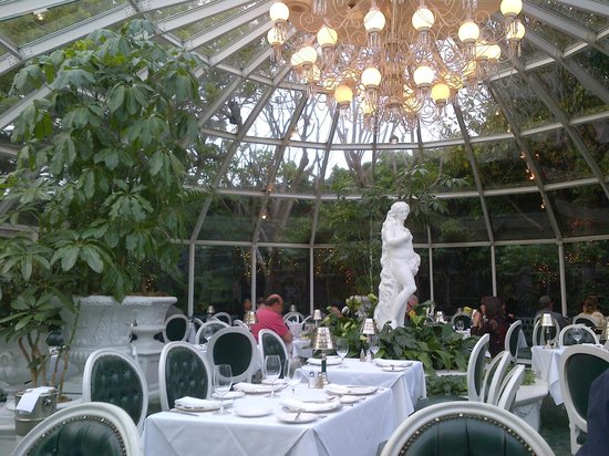 The Sardine Factory : The Conservatory
