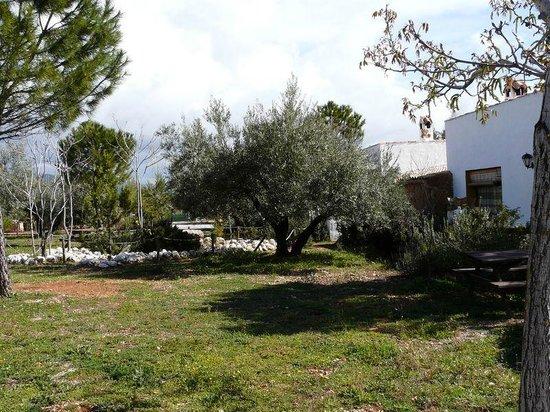 Alojamientos Rurales Hacienda Sierra de Cazorla: Exteriores