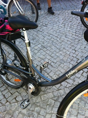 Rent a Fun - Electric Bike tours & Rentals: my bike for the day