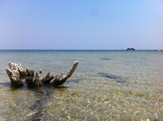 Mbuna Bay Lodge - Lake Malawi : The beach