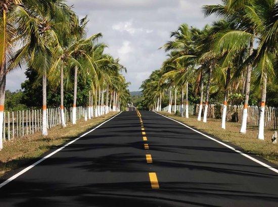 Carretera que lleva a Praia do Baixio Bahia Brasil